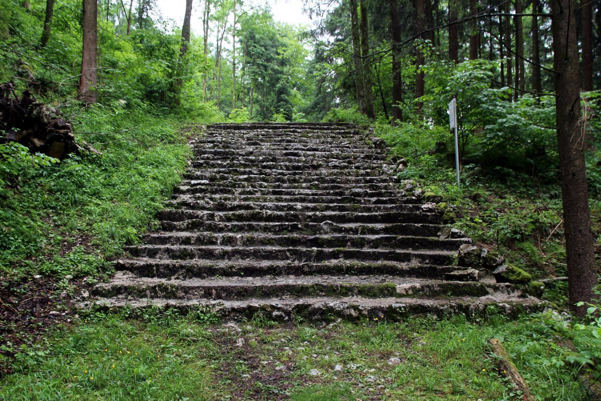 """""""Loewengang"""" leirin vangit menivät näiden portaiden kautta orjatyöhön"""